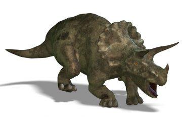 Случајно пронајден костур од Диносаурус