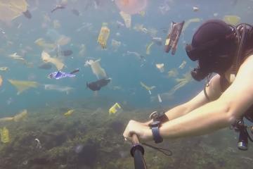 Ако не верувате дека ја загадуваме земјата, тогаш погледнете ја оваа видео снимка!