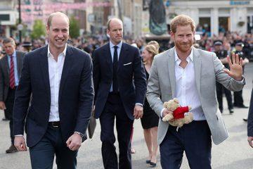 Принцот Хари и Вилијам прават изненадувачки потег: Се сретнаа со народот пред замокот Виндзор пред утрешната кралска свадба (ВИДЕО)