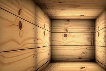 Дали ќе поминете 30 часа во ковчег поради одредена сума на пари?