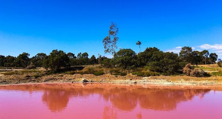 Пинк езерото Пачир лечи ревматизам и кожни болести: Ова место е рај на земјата! (ФОТО)